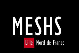 MESHS_Logo_NoirRouge_Sans_1.png